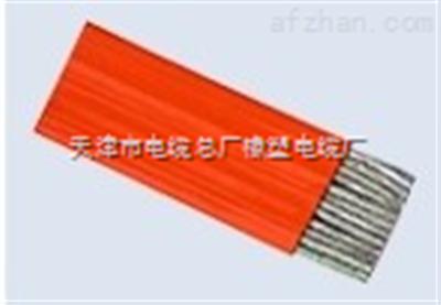 ZR-KGGRB ZR-KGGRB硅橡胶扁电缆厂家