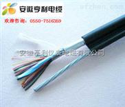 IA-DJFP2V22-(吉林計算機電纜)(IA-DJFP2V22電纜)