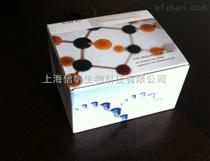酸性蛋白酶試劑盒促銷,檢測酸性蛋白酶