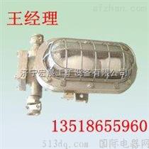 DGC55/127N矿用隔爆型支架灯