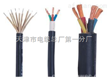 DJFFP2R计算机电缆