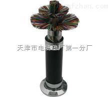 WDZ-HYA23低烟无卤阻燃通信电缆