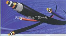KVVP控制电缆KVVP