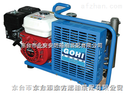 呼吸器充气泵CCS认证|充气泵生产厂家