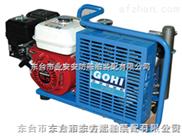 呼吸器充气泵CCS认证 充气泵生产厂家