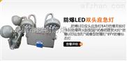 柳市BCJ-LED双头防爆应急灯地区价格