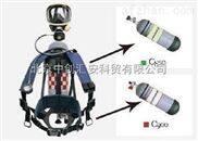 巴固空气呼吸器,巴固c850正压呼吸器