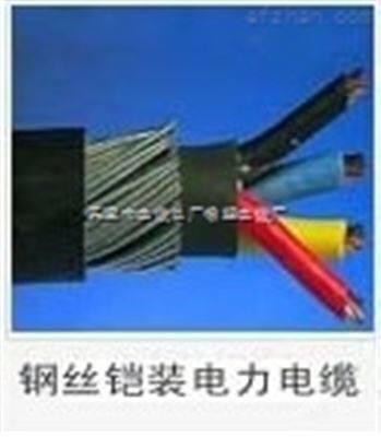 FS-YJV32防水电缆