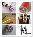 山西省8.7/10kv小猫牌MYPTJ3*25+3*16/3+3*2.5国家定点电缆生产厂家