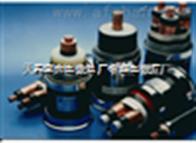 中国大城ZR-VV阻燃电缆2*4现货