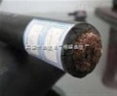 JHS1*70防水单芯电缆,JHS 1*120防污水电缆