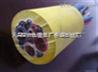 YZ中型橡套电缆