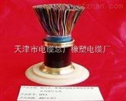 济宁HYA市内通信电缆系列10*2*0.8
