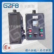 防爆防腐全塑控制箱厂家|防腐蚀全塑WF2控制箱