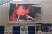深圳P8LED户外显示屏生产厂家