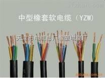 YCW450V电缆YCW耐油污软电缆3*95mm2