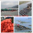 环保塑料养殖塑料浮球 网箱养殖浮筒厂家