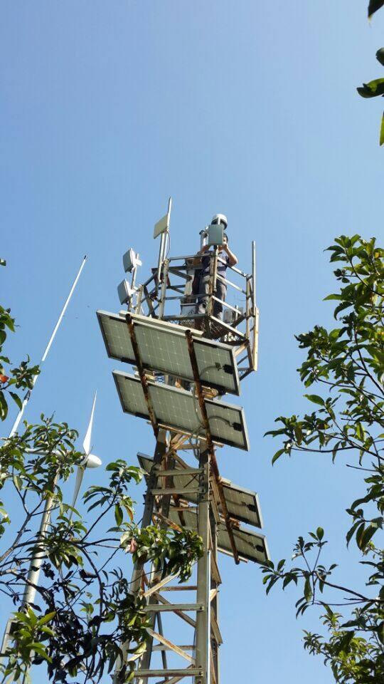 郊野无线远距离视频监控视频传输系统成功案例公园种植花椒图片