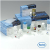 兔子肿瘤坏死因子相关凋亡诱导配体3(TRAIL-R3)ELISA试剂盒