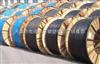 订做 BP-YJVP1-2特种屏蔽电缆-天津电缆厂