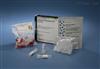 人胰岛素抗体(Anti-Ins)elisa检测试剂盒