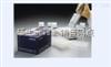 96T/48T上海Cyclin-D1小鼠细胞周期素D1ELISA试剂盒