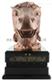 十二生肖网络摄像机-午马